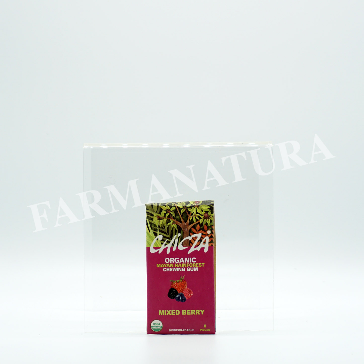 Chicza Organic Rainforest Gum Mixed Berry